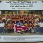 HVFC 2003 Premiers